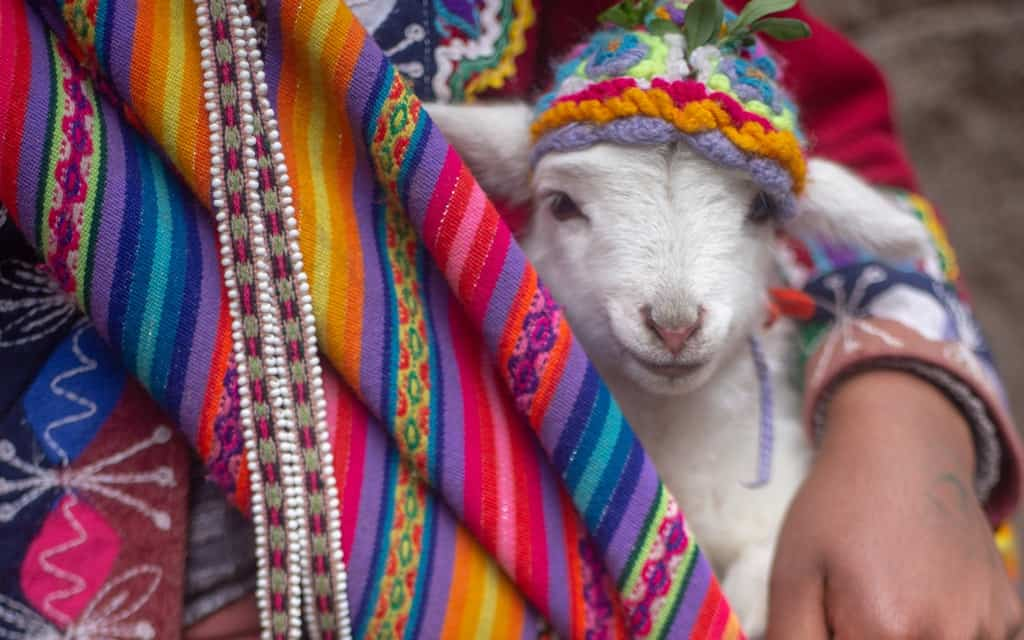 Things to do in Lima Peru, things to do in Lima, lima things to do, lima Peru things to do, lima attractions, best things to do in lima, #Lima #Peru