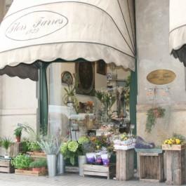 Oldest Flower Shop in Barcelona, Spain