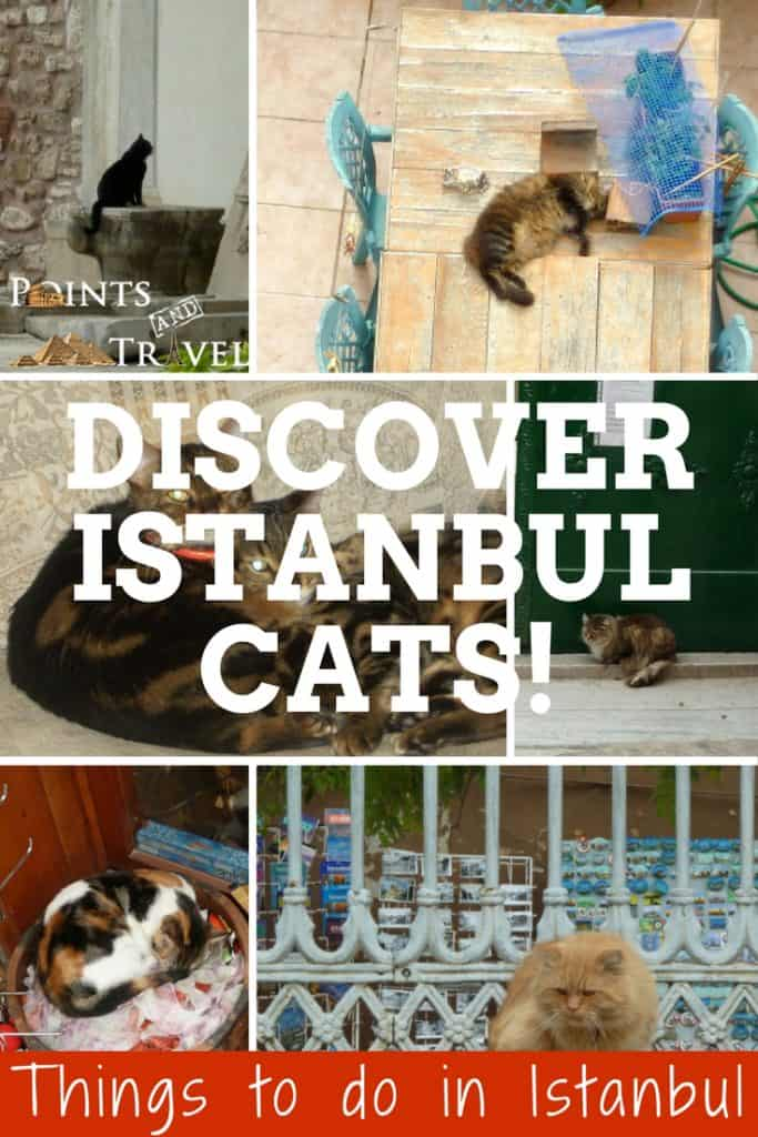 Come along with me to explore Hagia Sophia in Istanbul, Turkey. Things to do in Istanbul, Turkey.