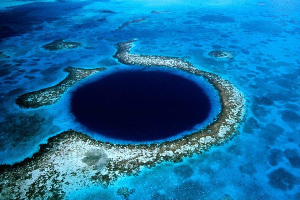 Blue Dive