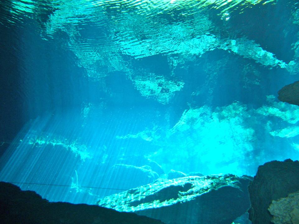 Cancun and Riviera Maya Cenotes underwater