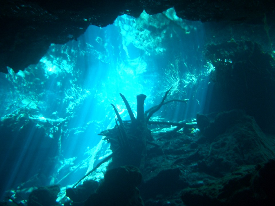 underwater photo of Cenote Kukulcan, Yucatan, Mexico