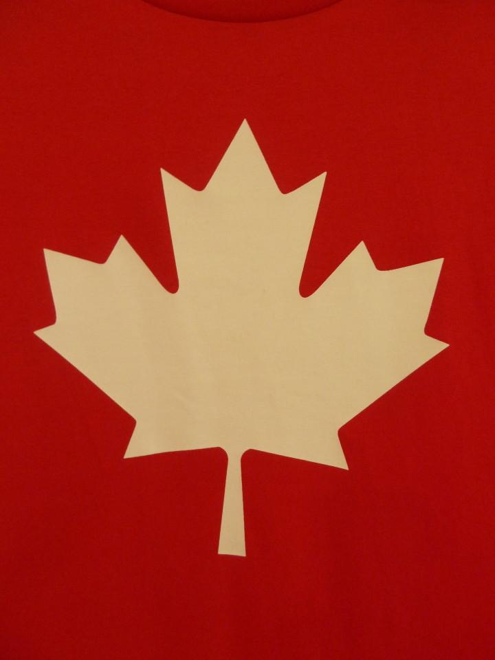 O CANADA! Niagara Falls Facts