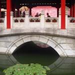 How I Grew Up in the Beijing Zoo, Beijing, China