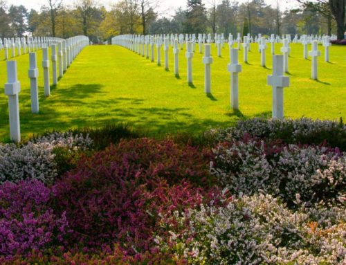 Normandy Tours from Paris, France: Remembering D Day