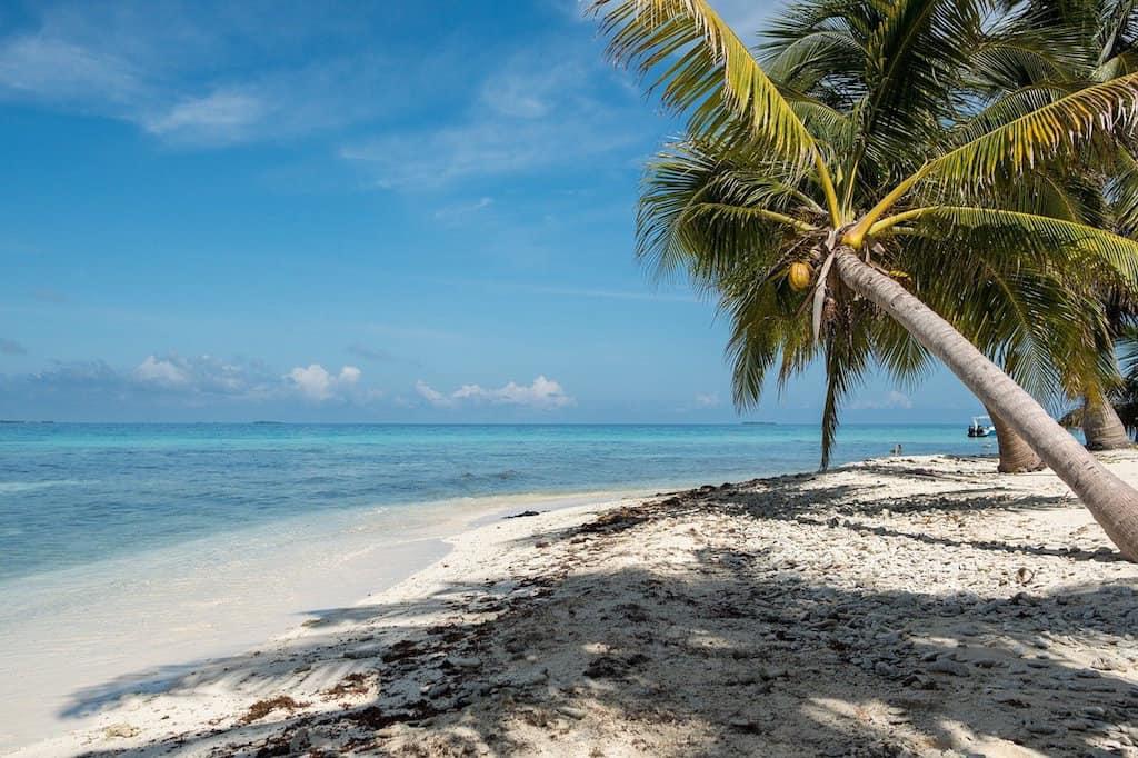 Belize: Maya Ruins & Bio diverse Jungles