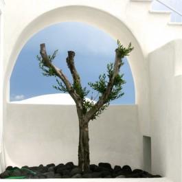 DreamScience, Santorini, Greece