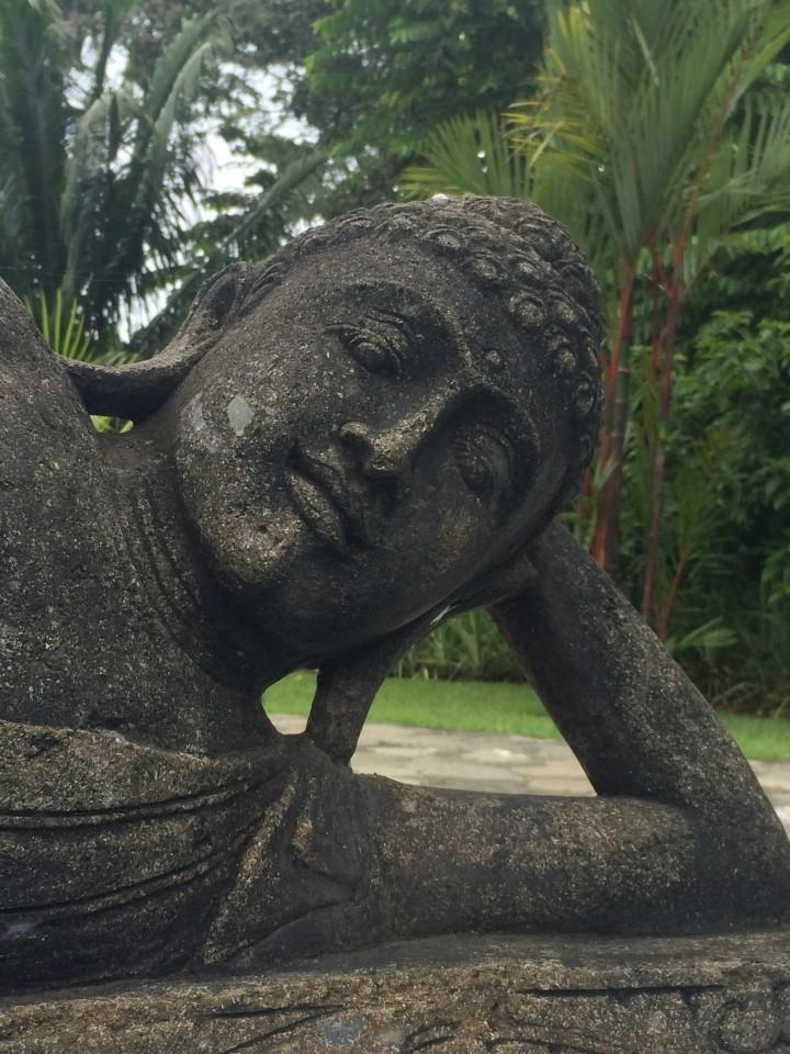 Blue Osa Yoga, Puerto Jimenz, Costa Rica