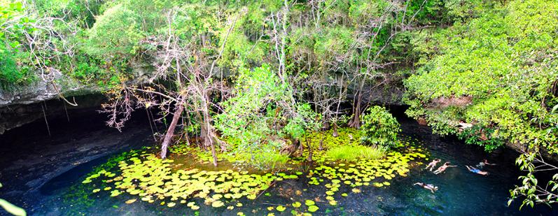 Xenotes Oasis Maya, Mexico
