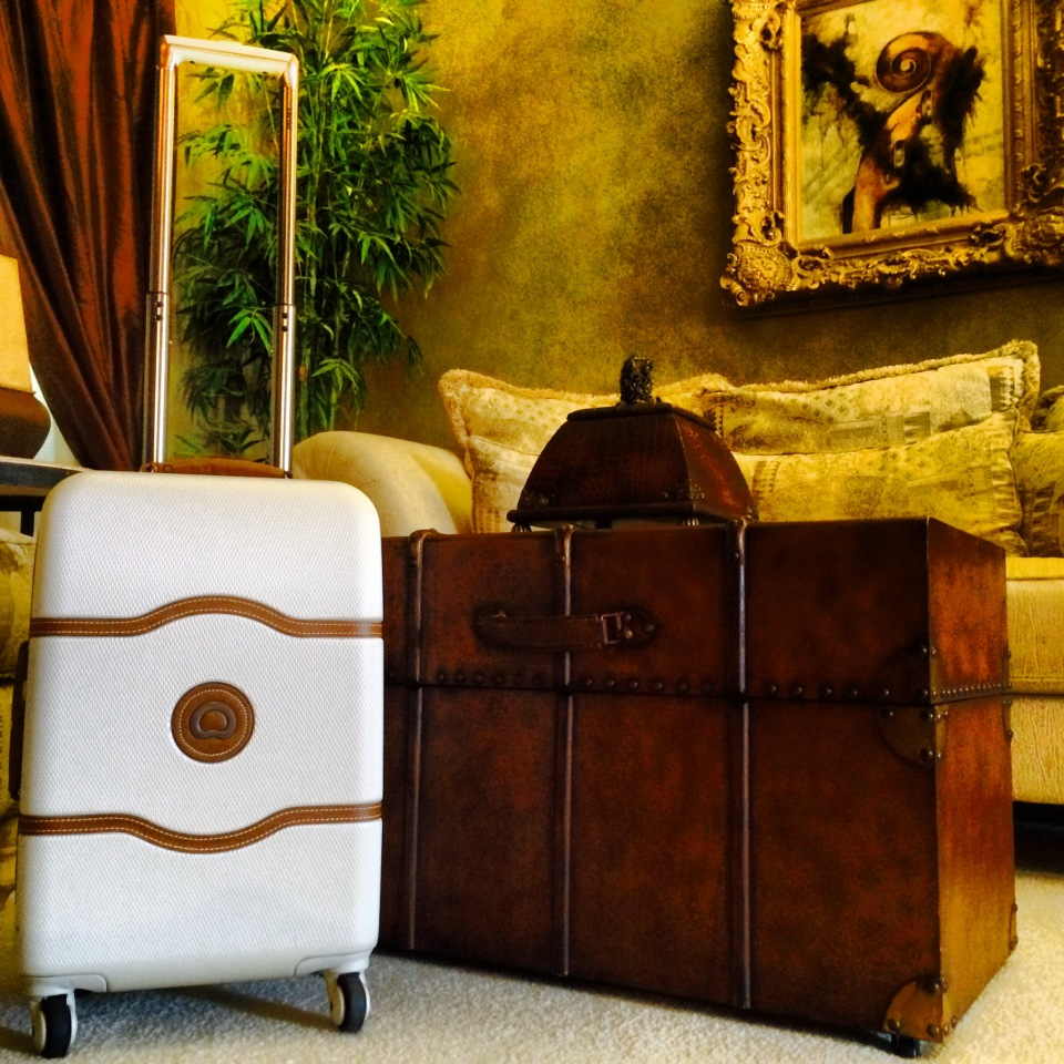 Delsey Chatelet Trolly Case (Carry-On)