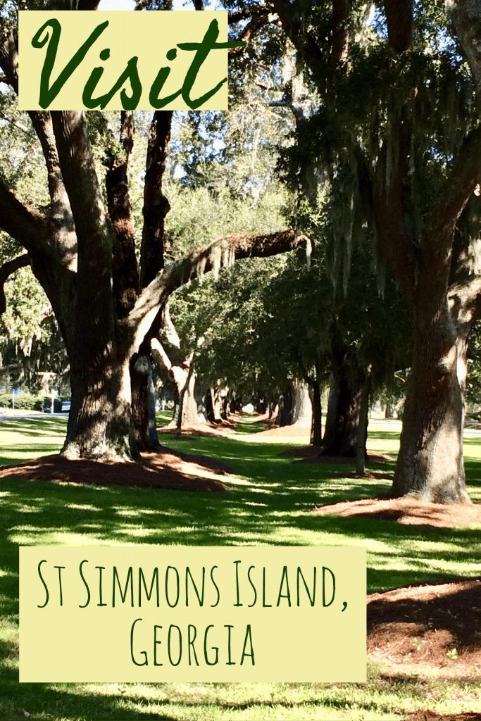 Oak Trees with Moss, St Simons Island Map, St Simons Island Beach, St Simons by the Sea, Little St Simons Island