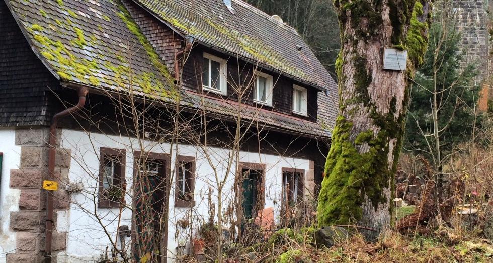 Black Forest, Germany (Schluvchsee)