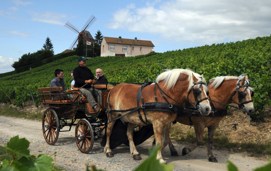 Uncorked and ready to go: La Champagne, France