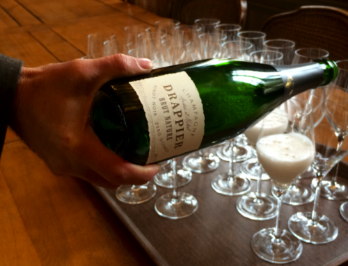 French Wine Regions: A Toast to the Champagne Houses of France