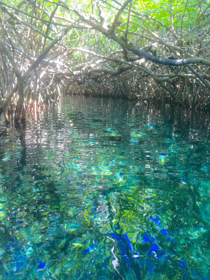 Xel Ha, Xel Ha Mexico, Xcaret Park, xel ha Tulum, excursions Riviera Maya
