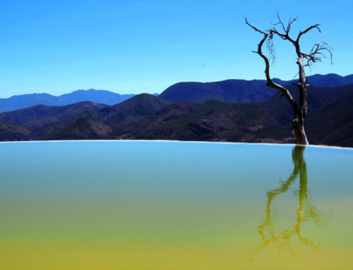 Getting to Know Hierve El Agua – The Petrified Waterfall of Oaxaca