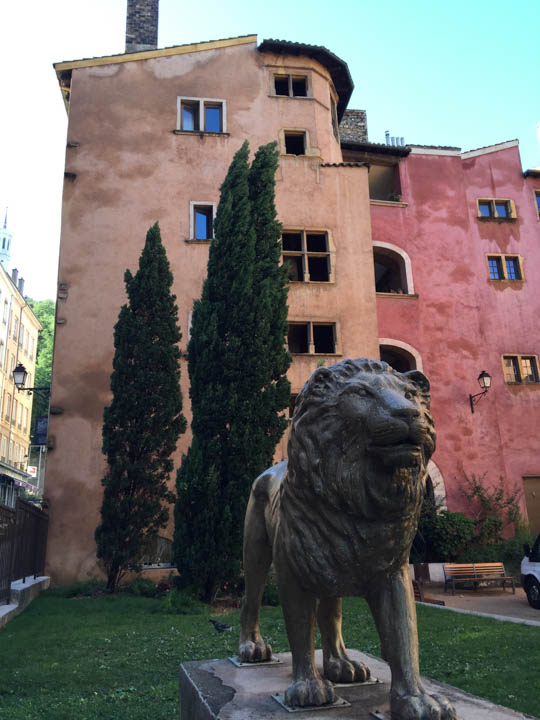Southern France, Viking Tours, French flowers, Lyon street scene, lion statue