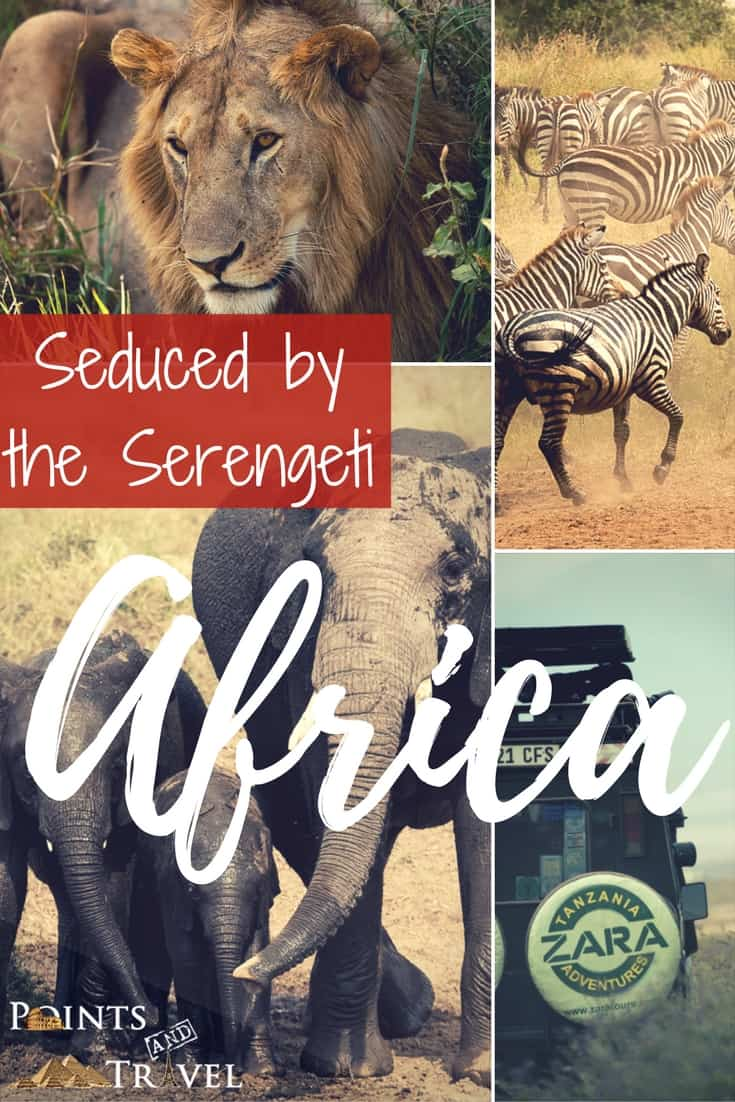 Africa: Seduced by the Serengeti