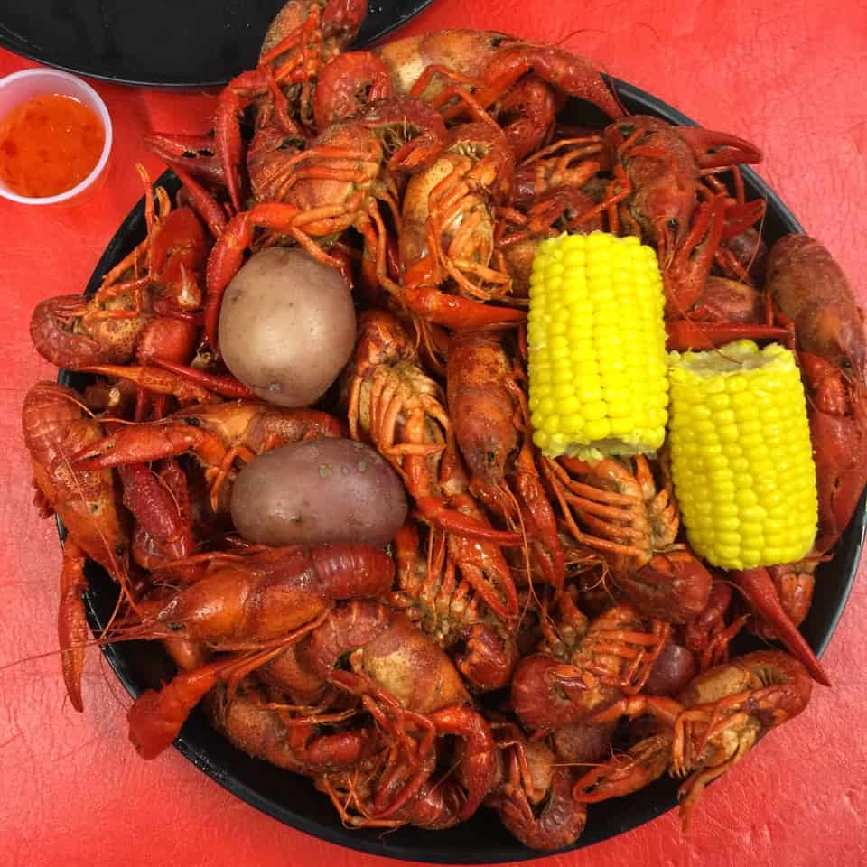 Come along with me as I try out so many foods of Louisiana you must try.