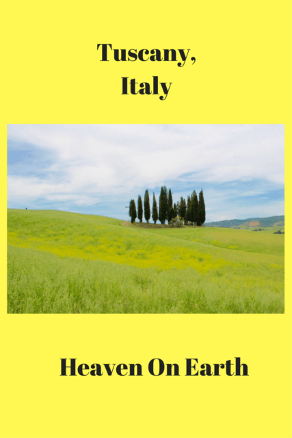 Come along with me as I explore the grounds of Hotel Adler in Tuscan, Italy. You will be revitalized and rested by the time you leave Hotel Adler.