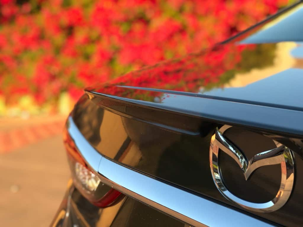 Holiday Road Trip Tips: Take a Trip, Travel Locally, red flowers reflecting on the hood of a silver Mazda6