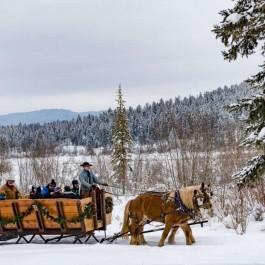 Sleigh ride, Montana's Winter Wonderland – ski Whitefish