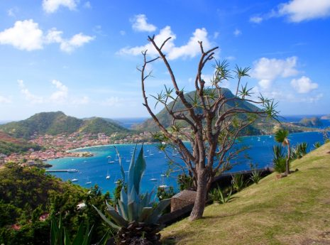Landscape, Guadeloupe Islands, Guadeloupe Holidays