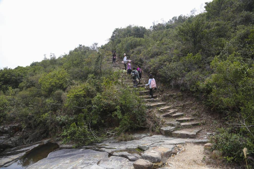 Hong Kong Hiking Bucket List, Hong Kong Hiking Trails, Dragon's Back, Dragon's Back Hike