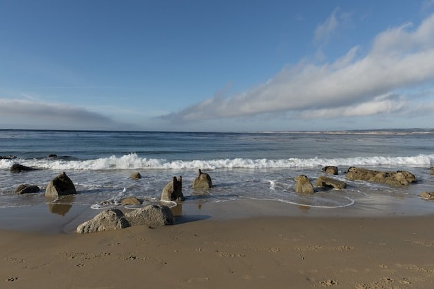 Surfing at Monterey Beach