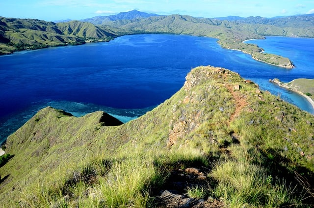 Komodo Dragons: Komodo Island is Worth A Visit!
