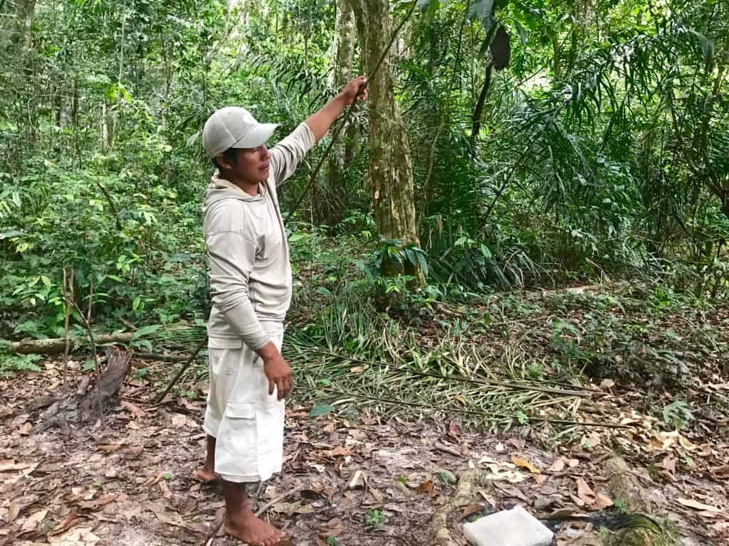 Piranha Fishing, Pirana Fishing, Rivers of South America, Guyana, Amazon River Basin