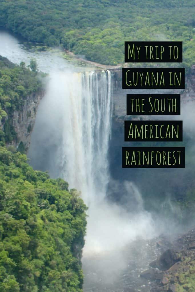 South American Rainforest, Rewa, Amazon Rainforest Facts, Amazon River facts