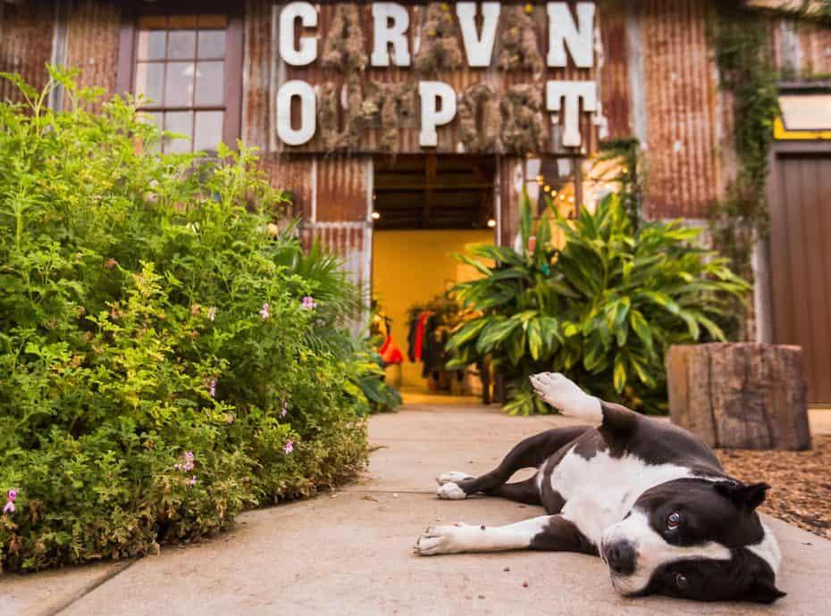 Ojai California, Things to do in Ojai , Ojai, Ojai CA, Ojai Restaurants