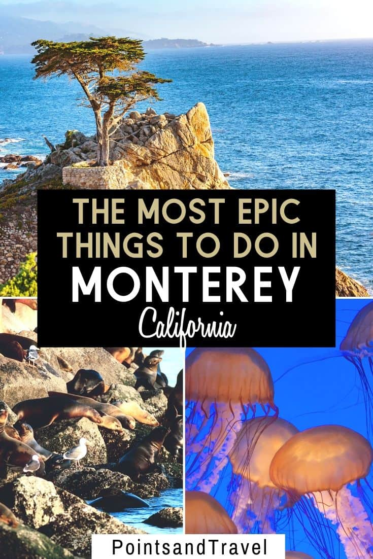 Here are the 10 Best Things to Do in Monterey, California. With its scenic cliffs, sand dunes, wine tasting, and a famous aquarium, there are so nay things to do during a weekend in Monterey | What to do in Monterey | Monterey Itinerary | Weekend in Monterey California | Monterey travel guide | #monterey #california