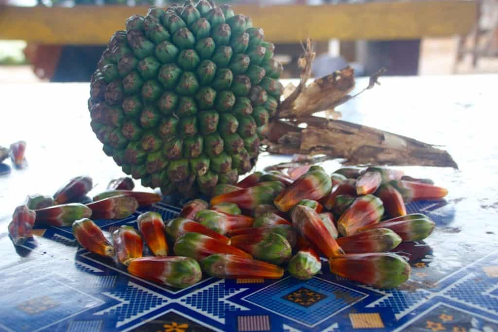 Food in Tonga