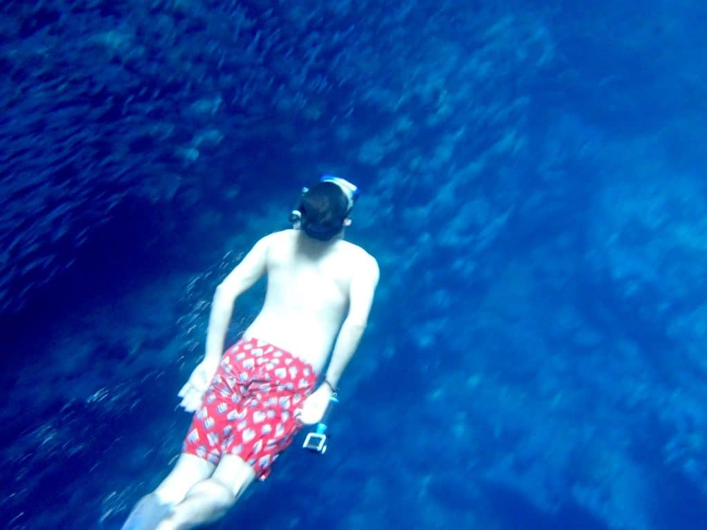 A thing to do in Tonga: Snorkel in Swallows cave
