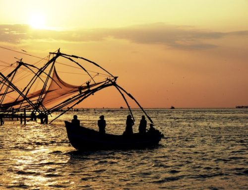 Magical Kerala in the Arabian Sea is a Must Visit