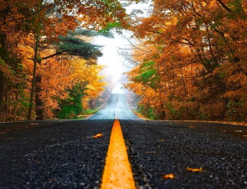 Road Tripping in Autumn: Tips for Comfort and Safety