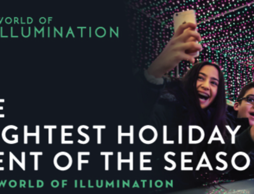 World of Illumination in the Phoenix AZ Area