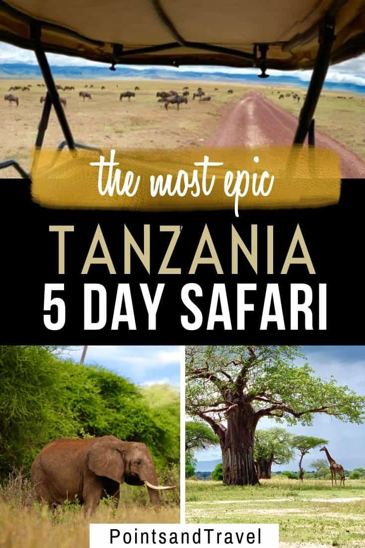 5 day safari in Tanzania, Tanzania 5 day itinerary for an amazing safari, the most epic Tanzania 5 day safari, #Tanzania #Safari