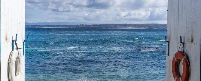 Things to do in Monterey, what to do in Monterey, #Monterey #California #Aquarium