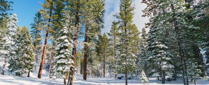 How to Plan the Perfect Lake Tahoe Winter Trip, Lake Tahoe Winter, The perfect Lake Tahoe Winter, #LakeTahoe #California #skiing