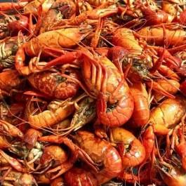 Louisiana Foods, Jambalaya Mix, Gumbo Mix, Red beans and rice,