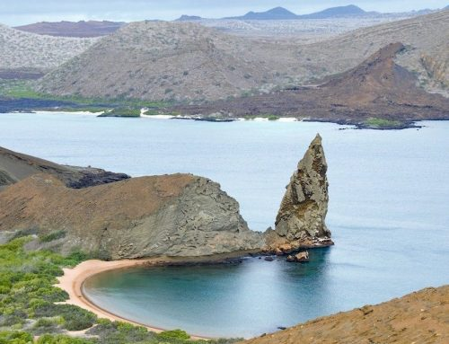 Galapagos Islands By Cruise: A Complete Guide