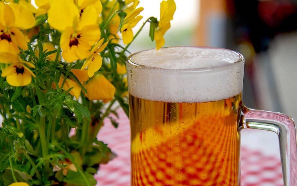 beer, Lederhosen, octoberfest clothing, lederhosen octoberfest, traditional lederhosen, mens lederhosen, authentic lederhosen, #beer #lederhosen