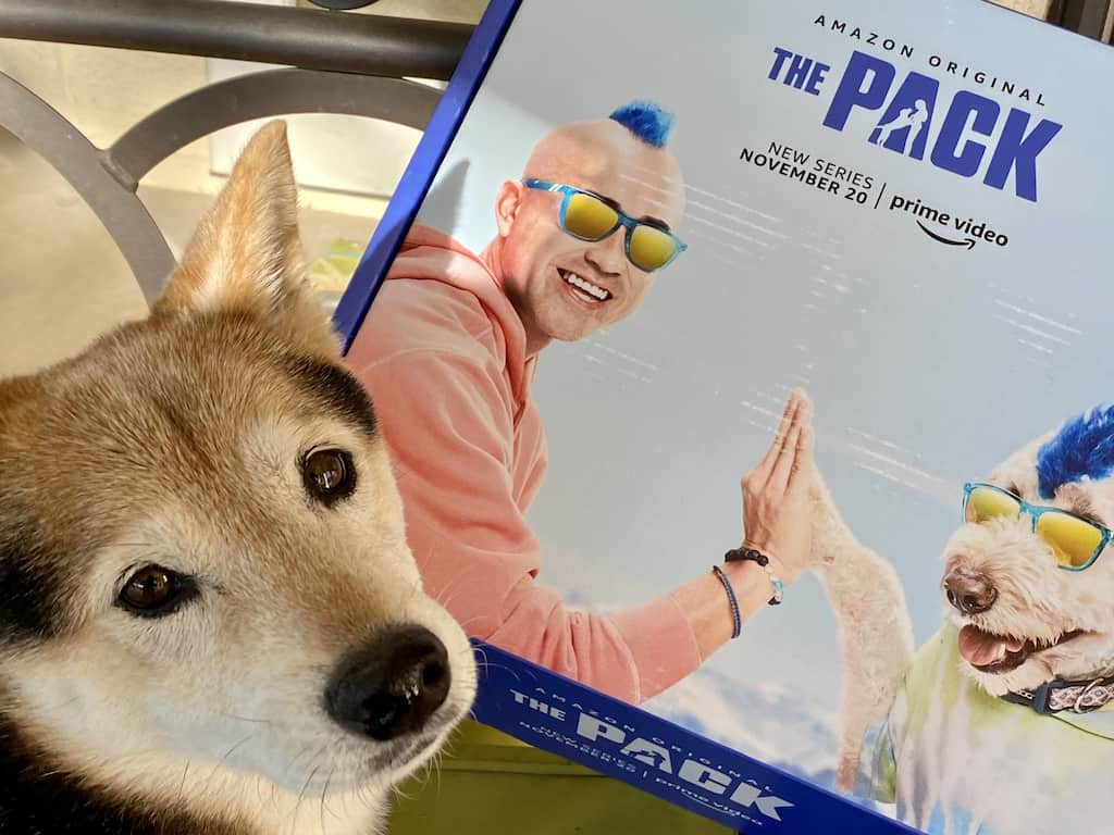 """The Pack"" - Amazon Video Series"