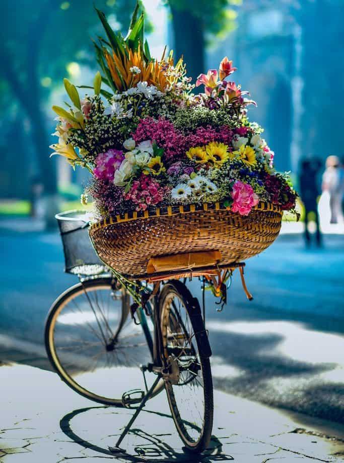 Grocery Stores in Vietnam, Vietnam stores, shopping in Vietnam #Vietnam #Shopping