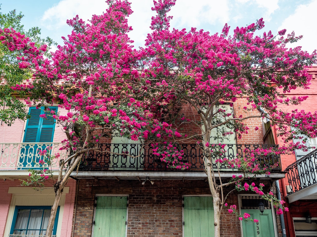 Things to do in New Orleans #NewOrleans #Louisiana