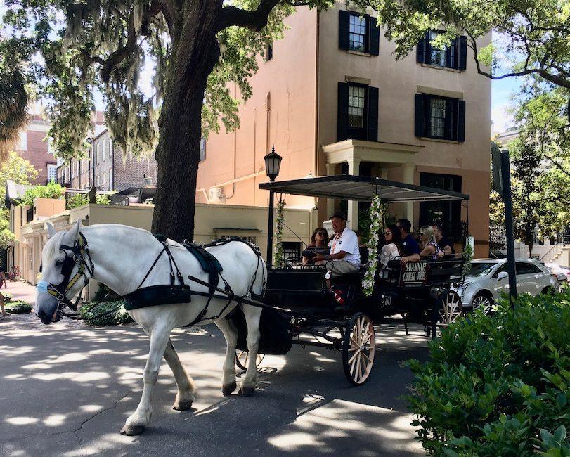 Romantic Horse Drawn Carriage Ride in Savannah GA