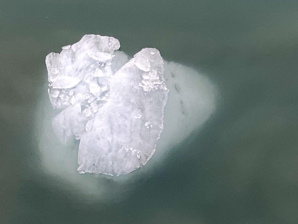 Large Icebergs in Glacier Bay National Park